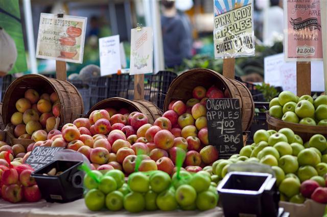 Marlborough Farmer's Market