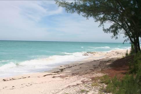 Bimini Bahamas Beach
