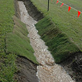 Turf used for Erosion control