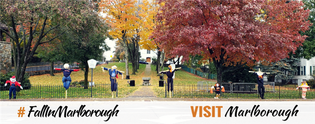 Visit Marlborough