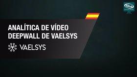 Analítica de Vídeo DeepWall de Vaelsys