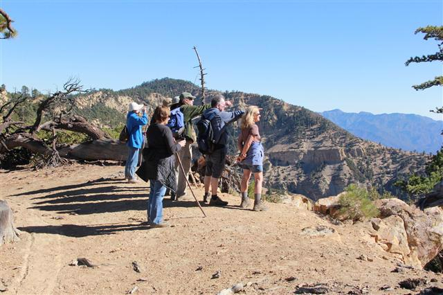 Pine Mountain vista point