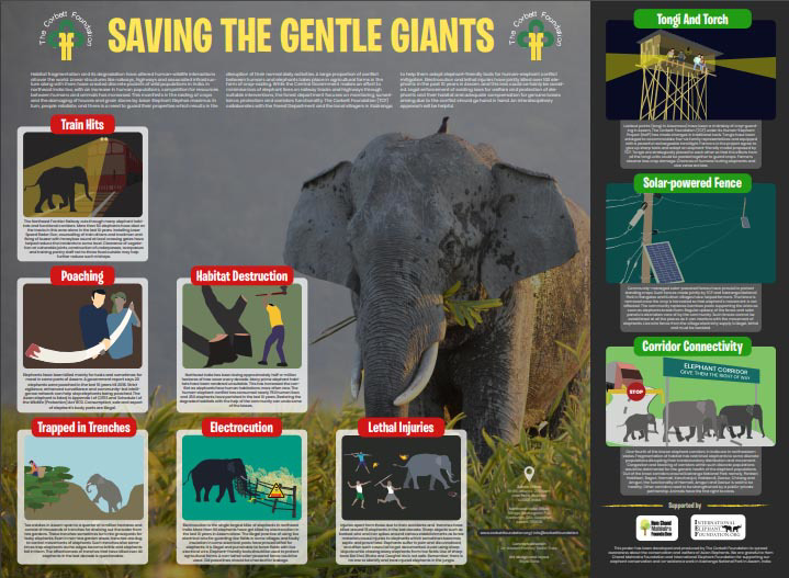 Poster on Human_elephant Conflict Mitigation