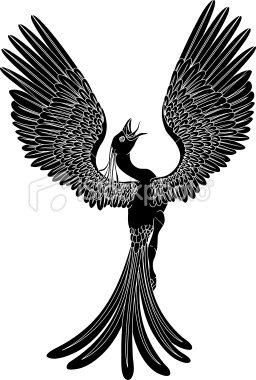 The Phoenix that is Tohoku