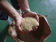 Unmilled Brown Rice