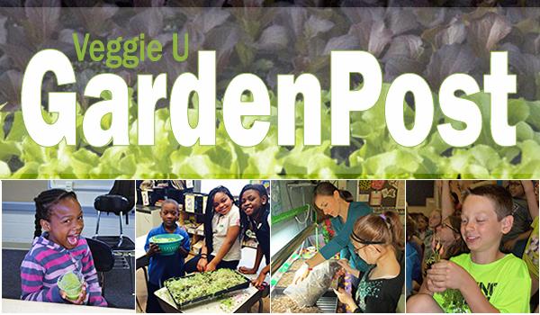 Garden Post Masthead