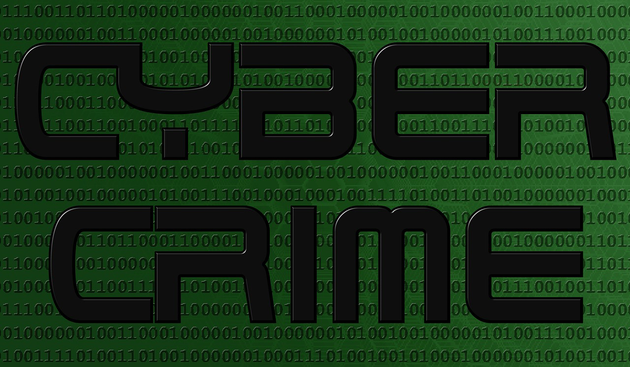 Cyber Crime - Identity Theft