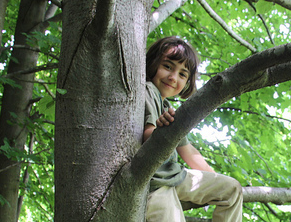 a child in a tree