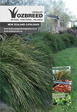 New NZ Brochure