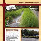 Tanika turns 10