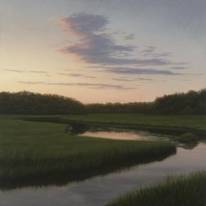 Evening Light Study