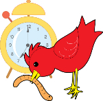 Red bird with worm and clock in background