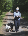 Image of a person walking on the trail with dogs
