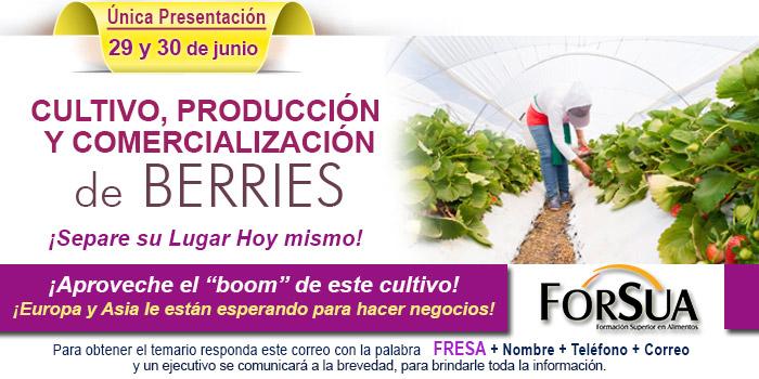 Cultivo, Produccion y Comercializacion de berries 29 y 30 de junio en cdmx