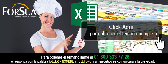 Formatos de Operacion y   Controles Basicos en Excel para Restaurantes