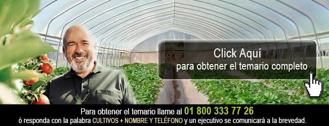 Estandares para el uso de Invernaderos en los Cultivos Agricolas