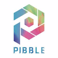 https://www.pibble.io/