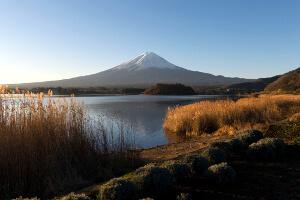 Japan's 3 Great Gardens